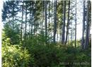 1532 Wild Cherry Terrace - Image 4